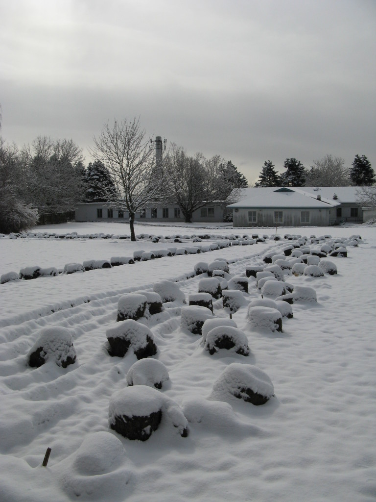 Preparing land for the Market Garden at GPC in March 2009