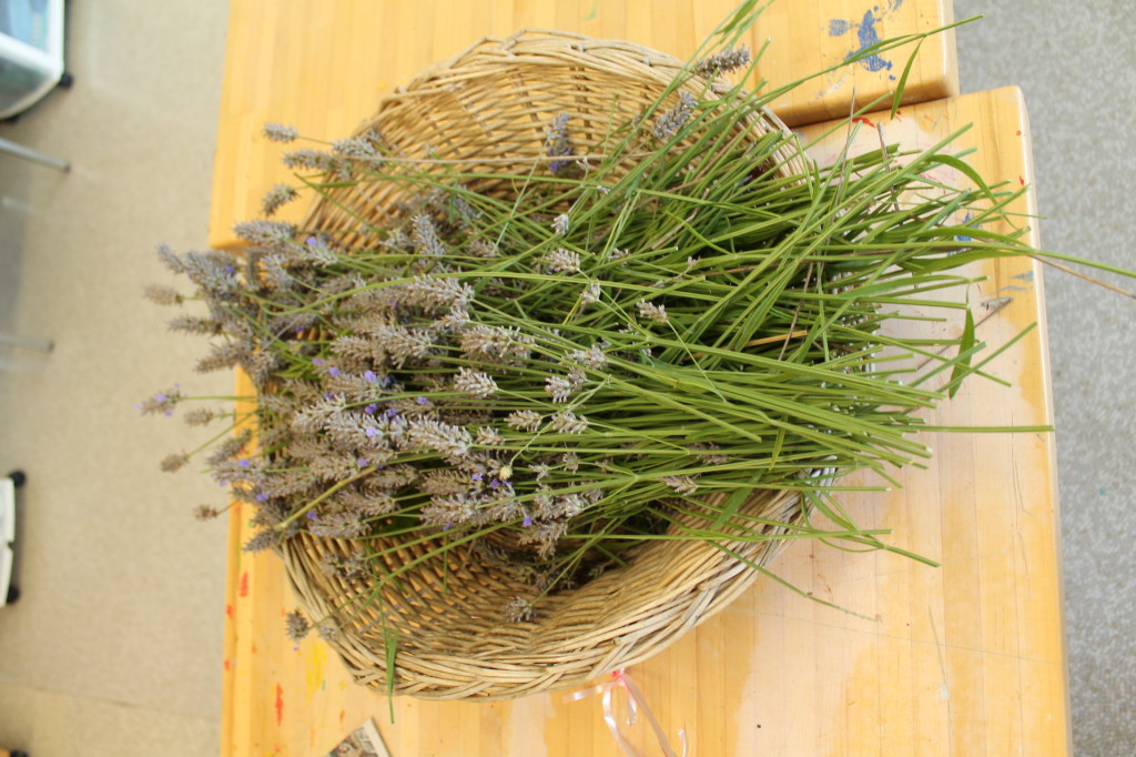 This image depicts a basket of lavender