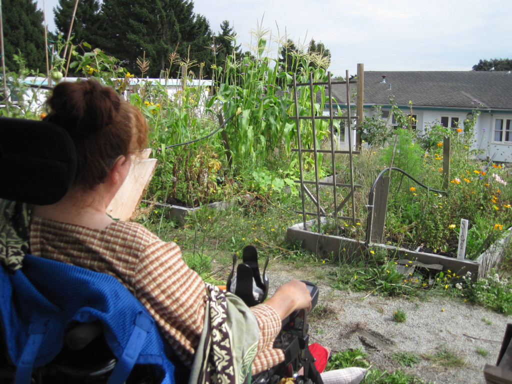This image depicts a residents reading in the garden